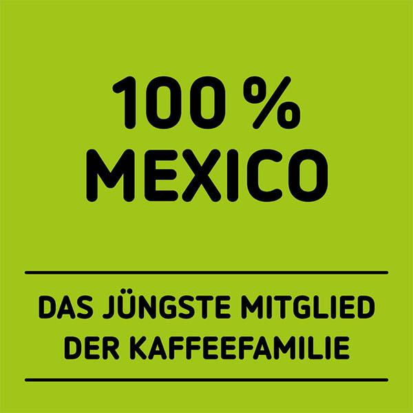 Hochland Cold Brew-Kaffee aus Mexico auf grünem Hintergrund